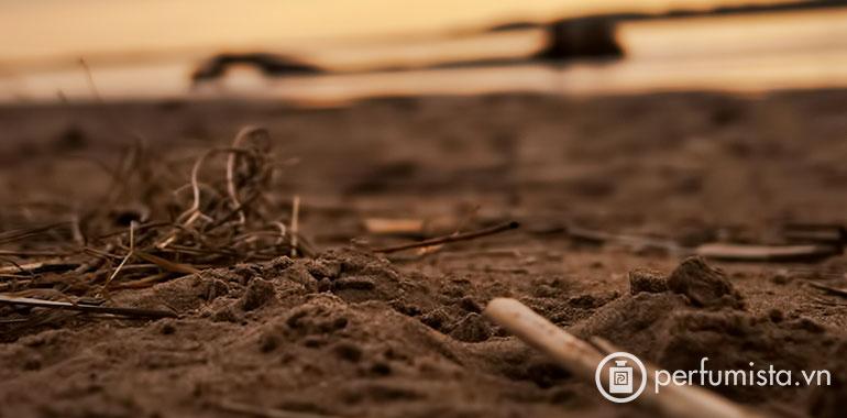 Cồn đất