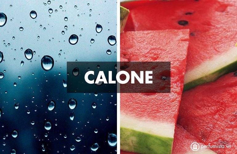 Hương Calone