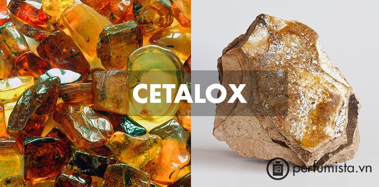 Chất Cetalox