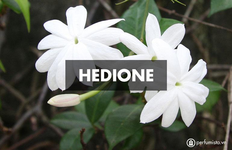 Hedione