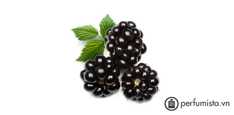 Quả Dewberry