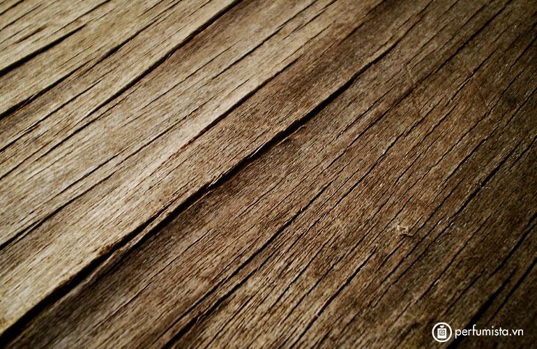 Hương của gỗ