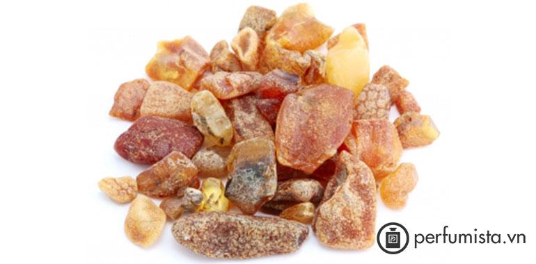 Nhựa Galbanum
