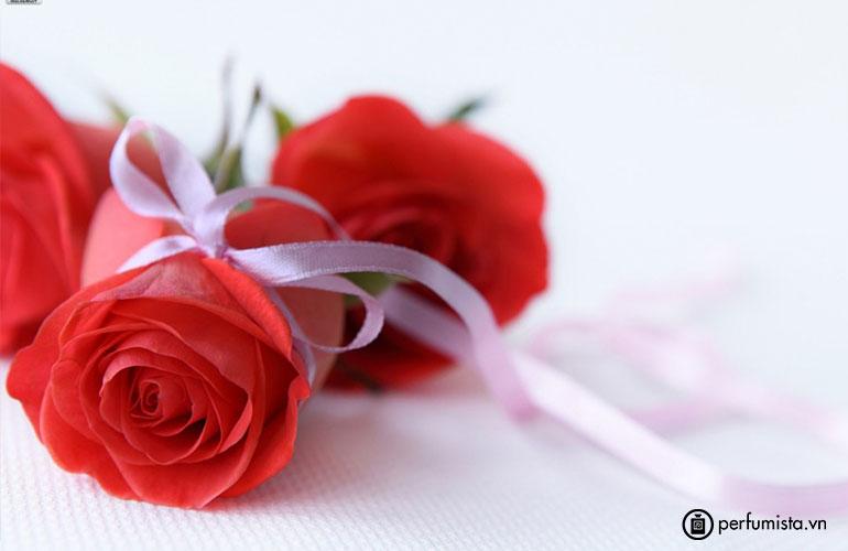 Hoa hồng trà